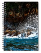 Clashing Nature Spiral Notebook