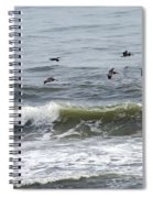 Classic Brown Pelicans Spiral Notebook
