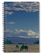 Classic Country Scene Spiral Notebook