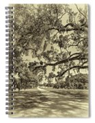 Classic Southern Beauty - Evergreen Plantation -sepia Spiral Notebook