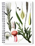 Claviceps Purpures. Recht Wolf's-foot Clubmoss, Stag's- Spiral Notebook