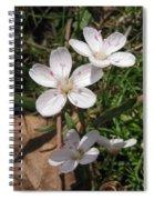 Claytonia Spiral Notebook