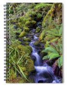 Cleansing The Soul Spiral Notebook