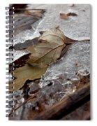 Clear Creek Greenway Three Spiral Notebook