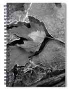 Clear Creek Greenway Two Spiral Notebook