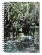 Clear Lithia Springs Spiral Notebook