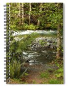 Clear Mountain Stream Spiral Notebook
