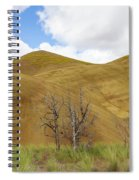 Clear Sky At Painted Hills Spiral Notebook