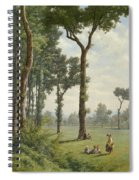 Clearance In An Oak Forest Spiral Notebook