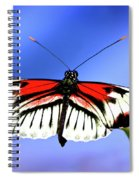 Cleared For Takeoff Spiral Notebook