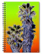 Clearlake Palm Trees Spiral Notebook