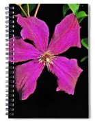 Clematis 2598 Spiral Notebook