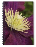 Clematis 4000 Spiral Notebook