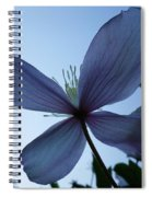 Clematis At Dusk Spiral Notebook