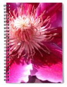 Clematis Bloom.. Spiral Notebook