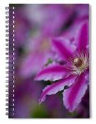Clematis Dream Spiral Notebook