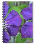 Clematis Friends Spiral Notebook
