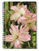 Clematis Montana Marjorie 1060  Spiral Notebook