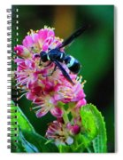 Clethra And Wasp Spiral Notebook