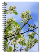 Flowering Pear Spiral Notebook