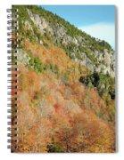 Cliff 2 Spiral Notebook