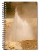 Cliff Geyser Spiral Notebook