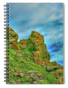Cliff #h0 Spiral Notebook