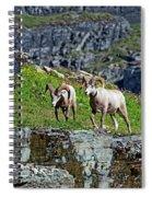 Cliff Walker Spiral Notebook