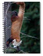Climbing Down Spiral Notebook