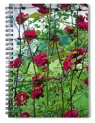 Climbing Roses Spiral Notebook