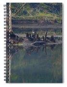Clinch River Beauty Spiral Notebook