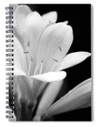 Clivia Flowers Black And White Spiral Notebook