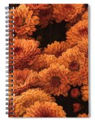 Clockwork Orange Spiral Notebook