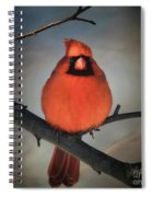 Close Encounter On A Blustery Day Spiral Notebook