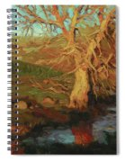 Close Of Day Spiral Notebook