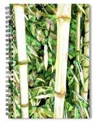 Close Up Big Fresh Bamboo Spiral Notebook