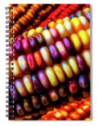 Close Up Indian Corn Spiral Notebook