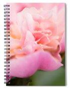 Close Up Macro Peony Flower Spiral Notebook