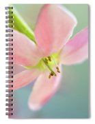 Close Up Of A Pink Flower Spiral Notebook