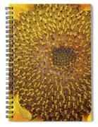 Close Up Of A Sunflower Head Spiral Notebook