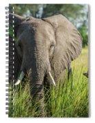 Close-up Of Elephant Behind Bush Facing Camera Spiral Notebook