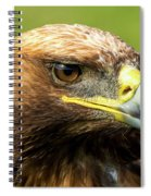 Close-up Of Golden Eagle With Turned Head Spiral Notebook