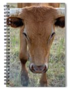 Close Up Of Longhorn Head Through Fence Spiral Notebook