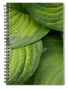 Close-up Of Raindrop On Green Leaves Spiral Notebook