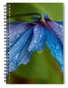 Close-up Of Raindrops On Blue Flowers Spiral Notebook