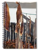 Close Up Of Salt Cod Pieces Drying In Bonavista, Nl, Canada Spiral Notebook