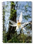 Close-up Of White Trout Lily Spiral Notebook