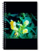 Close Up Of Yellow Wild Flowers Spiral Notebook