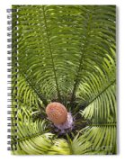 Close-up Palm Leaves Spiral Notebook