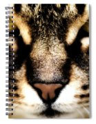Close Up Shot Of A Cat Spiral Notebook
